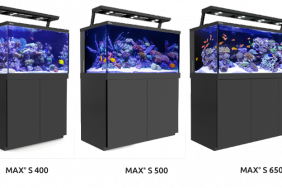 Akvárium Red Sea MAX S - 650 LED - Black